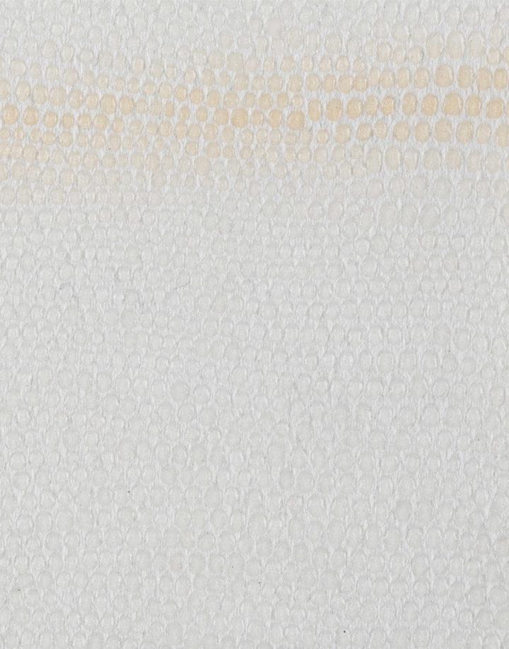 lucertola-tr-bianca